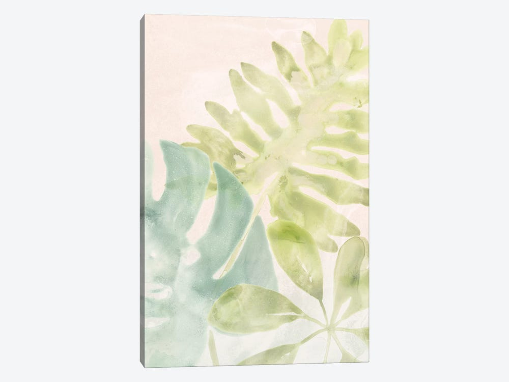 Tropical Sorbet I by June Erica Vess 1-piece Canvas Print