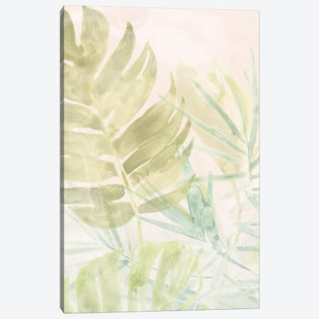Tropical Sorbet II Canvas Print #JEV1426} by June Erica Vess Canvas Art