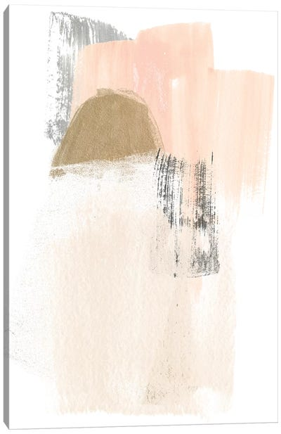 Blush Abstract V Canvas Art Print