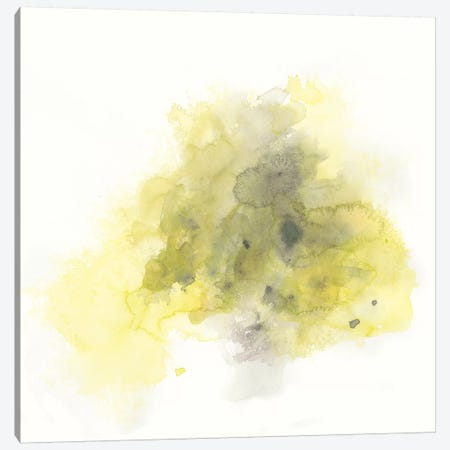 Citron Cloud II Canvas Print #JEV1489} by June Erica Vess Canvas Print