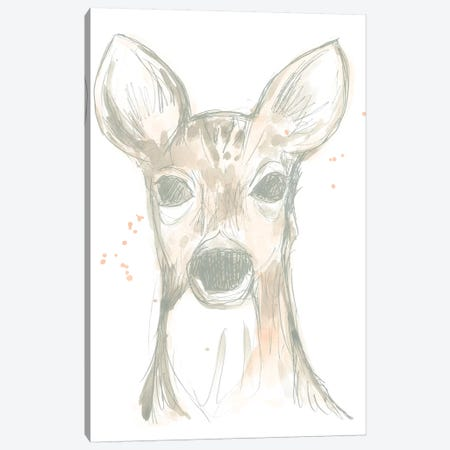 Deer Cameo II Canvas Print #JEV1505} by June Erica Vess Art Print