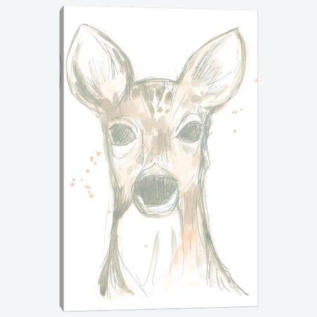 Deer Cameo II Canvas Print #JEV1505} by June Erica Vess Art Print