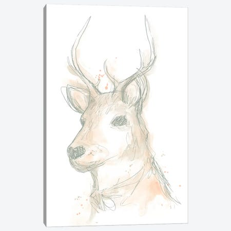 Deer Cameo III Canvas Print #JEV1506} by June Erica Vess Canvas Print