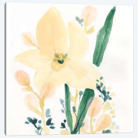 Garden Essence II Canvas Print #JEV1529} by June Erica Vess Canvas Artwork