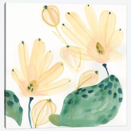 Garden Essence IV Canvas Print #JEV1531} by June Erica Vess Art Print