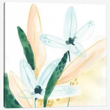 Garden Essence IX Canvas Print #JEV1532} by June Erica Vess Canvas Art Print