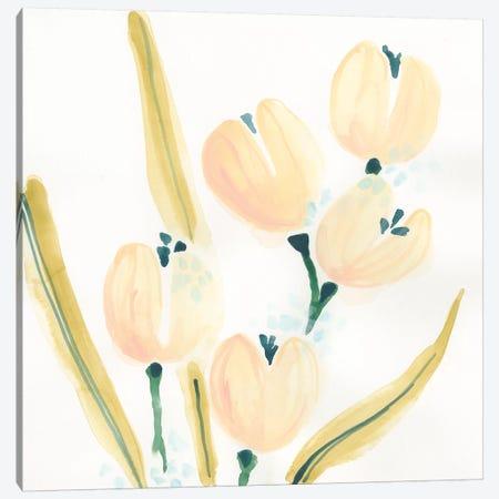 Garden Essence V Canvas Print #JEV1533} by June Erica Vess Canvas Art Print
