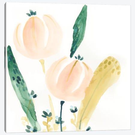 Garden Essence VIII Canvas Print #JEV1536} by June Erica Vess Canvas Artwork