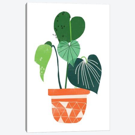 Happy Plants II Canvas Print #JEV1554} by June Erica Vess Canvas Art