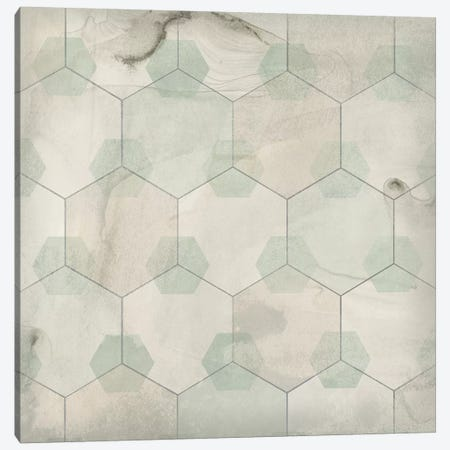 Hexagon Tile III Canvas Print #JEV1559} by June Erica Vess Canvas Print