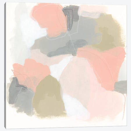 Pink Cloud IV Canvas Print #JEV1593} by June Erica Vess Canvas Art Print