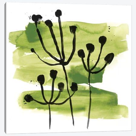 Tropical Sumi-e VIII Canvas Print #JEV1644} by June Erica Vess Canvas Wall Art