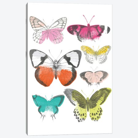 Chromatic Butterflies I Canvas Print #JEV1685} by June Erica Vess Canvas Artwork