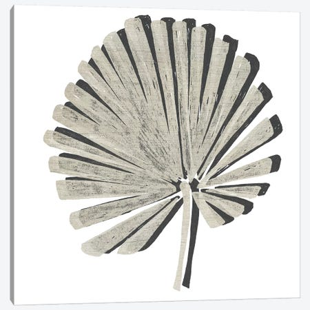 Cut Paper Palms VI Canvas Print #JEV1696} by June Erica Vess Canvas Print