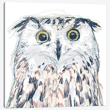 Funky Owl Portrait II Canvas Print #JEV1718} by June Erica Vess Art Print