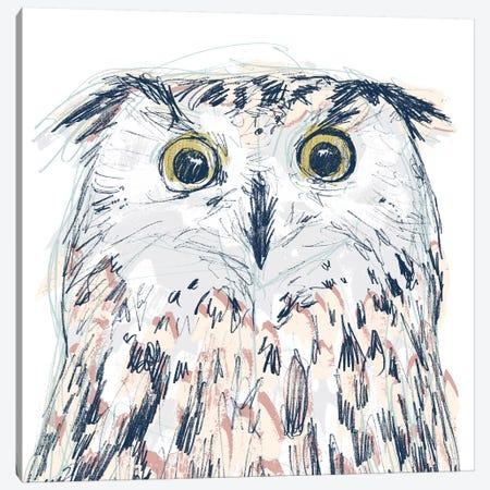 Funky Owl Portrait II Canvas Print #JEV1718} by June Erica Vess Art Print