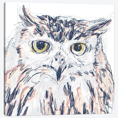 Funky Owl Portrait III Canvas Print #JEV1719} by June Erica Vess Canvas Print