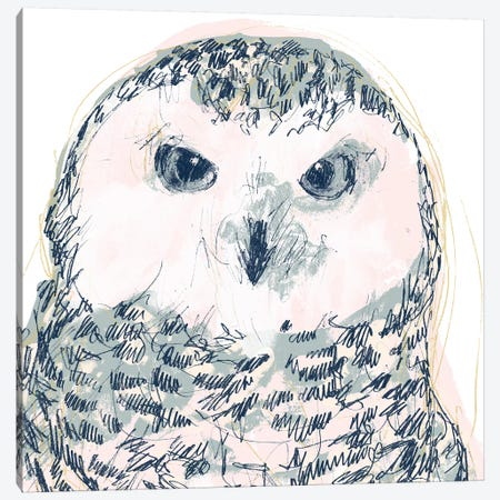 Funky Owl Portrait IV Canvas Print #JEV1720} by June Erica Vess Canvas Wall Art