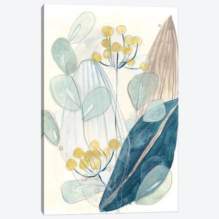 Terra Garden II 3-Piece Canvas #JEV1747} by June Erica Vess Canvas Print