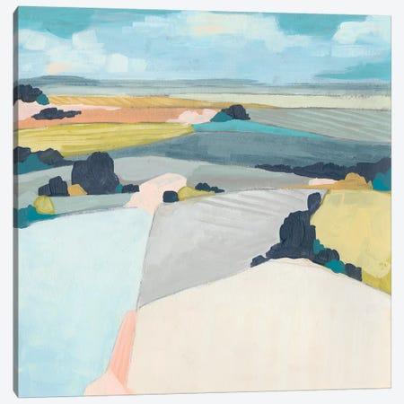 Chromatic Fields I Canvas Print #JEV1759} by June Erica Vess Canvas Art Print
