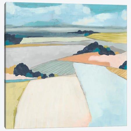 Chromatic Fields II Canvas Print #JEV1760} by June Erica Vess Canvas Wall Art
