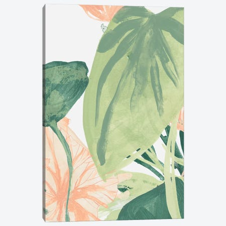 Blush Breeze II Canvas Print #JEV1799} by June Erica Vess Art Print
