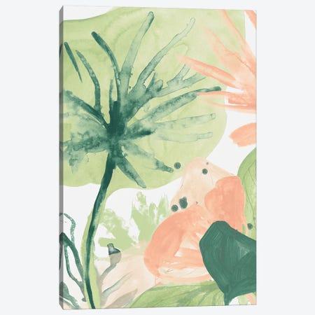 Blush Breeze III Canvas Print #JEV1800} by June Erica Vess Canvas Art Print