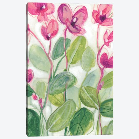 Cyclamen Fantasia I Canvas Print #JEV1833} by June Erica Vess Canvas Artwork