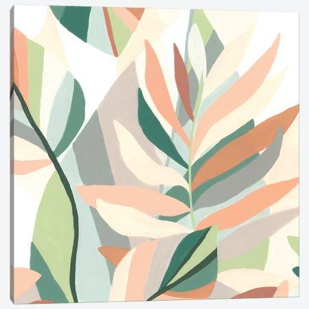 Soft Tropicals IV Canvas Print #JEV1926} by June Erica Vess Canvas Print
