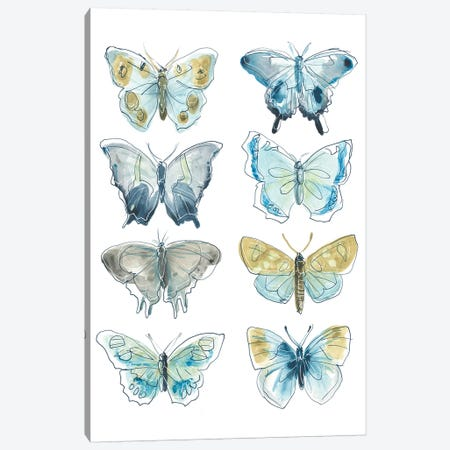 Butterfly Blues I Canvas Print #JEV1937} by June Erica Vess Canvas Artwork
