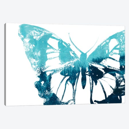 Butterfly Imprint I Canvas Print #JEV1939} by June Erica Vess Art Print