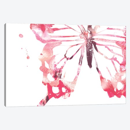 Butterfly Imprint IV Canvas Print #JEV1942} by June Erica Vess Canvas Art