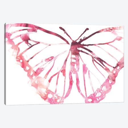 Butterfly Imprint VI Canvas Print #JEV1944} by June Erica Vess Canvas Print