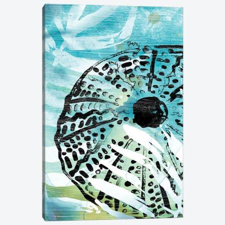 Echinoidia I Canvas Print #JEV1963} by June Erica Vess Canvas Artwork