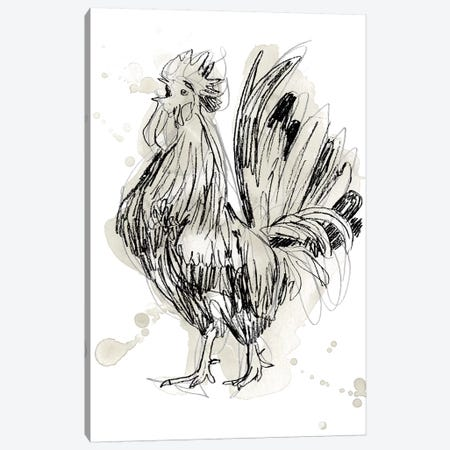 Feathered Fowl II Canvas Print #JEV1972} by June Erica Vess Art Print