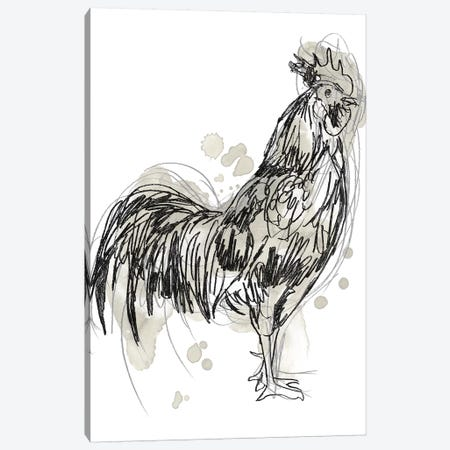 Feathered Fowl III Canvas Print #JEV1973} by June Erica Vess Canvas Art Print