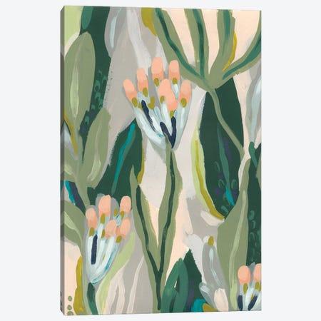 Floral Impulse II Canvas Print #JEV1978} by June Erica Vess Canvas Print