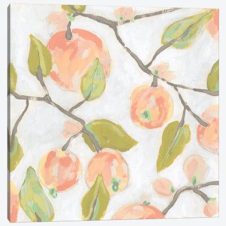 Fresh Fruit Fresco I Canvas Print #JEV1981} by June Erica Vess Canvas Wall Art