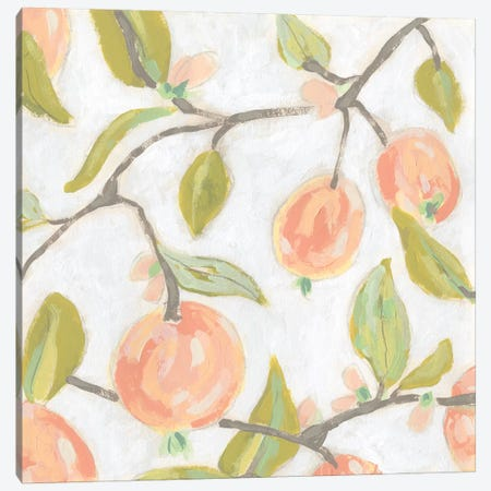 Fresh Fruit Fresco II Canvas Print #JEV1982} by June Erica Vess Canvas Artwork