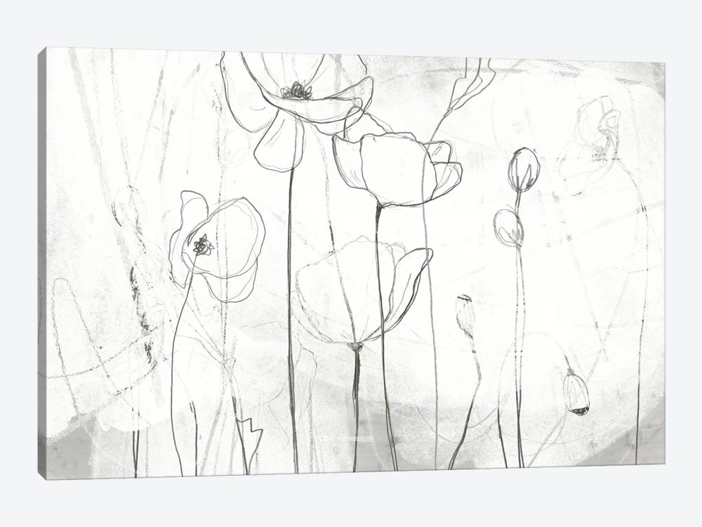 Poppy Sketches I by June Erica Vess 1-piece Canvas Art