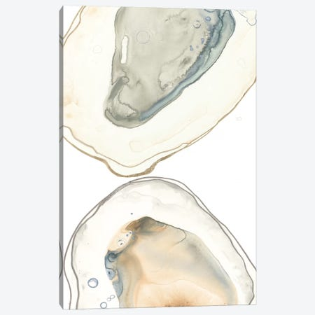 Ocean Oysters II Canvas Print #JEV2045} by June Erica Vess Canvas Wall Art