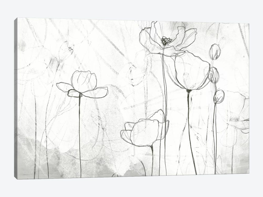 Poppy Sketches II by June Erica Vess 1-piece Art Print