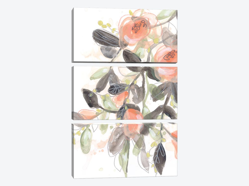 Sheer Blossoms I by June Erica Vess 3-piece Canvas Print