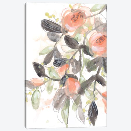Sheer Blossoms I 3-Piece Canvas #JEV2088} by June Erica Vess Canvas Print