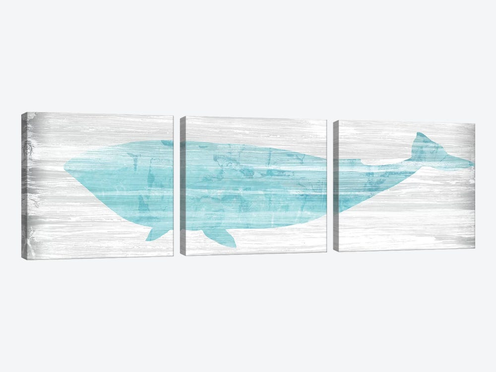 Weathered Whale II by June Erica Vess 3-piece Canvas Print