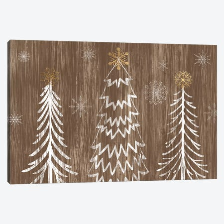 Barnwood Wonderland Collection A Canvas Print #JEV2137} by June Erica Vess Canvas Art