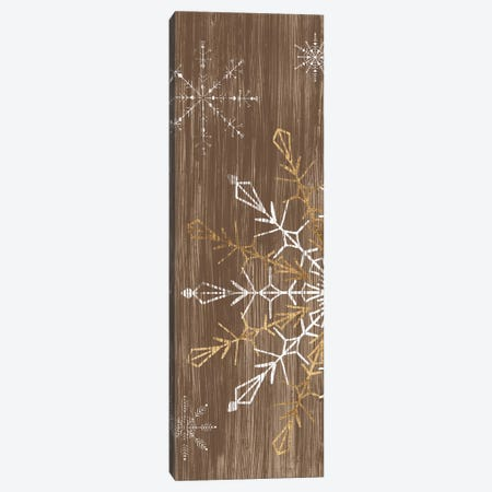 Barnwood Wonderland Collection B Canvas Print #JEV2138} by June Erica Vess Canvas Print