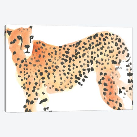 Majestic Cheetah II Canvas Print #JEV2266} by June Erica Vess Canvas Art