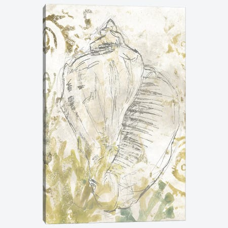 Verdant Shell Fresco I Canvas Print #JEV2314} by June Erica Vess Canvas Artwork