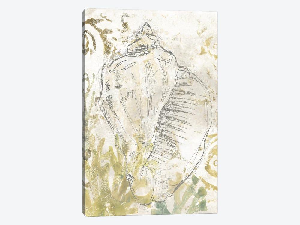 Verdant Shell Fresco I by June Erica Vess 1-piece Canvas Artwork